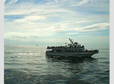 Cape Cod Cruises   Cape Cod Cruise from Boston