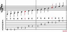 The Guitar Family Guitar Notes