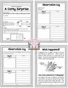 science worksheets on thanksgiving 12322 turkey in disguise holidays turkey disguise thanksgiving letter to parents