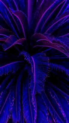 Iphone Aesthetic Wallpaper Neon