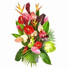 bouquet de fleurs exotiques image bouquet de fleurs exotiques pivoine etc