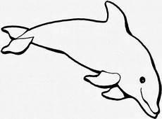 Malvorlagen Delfin J Malvorlagen Delfin