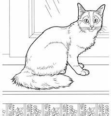 Comic Malvorlagen Mp3 Katze Ausmalbilder Zum Ausdrucken Kostenlos