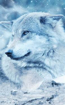 Wolf Hd Wallpaper For Mobile