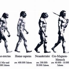 die evolution des menschen menschen halopedia fandom powered by wikia