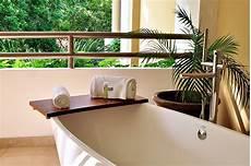 tipps f 252 r pflanzen im bad in ihrem bad11 ratgeber