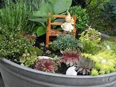 zinkwanne bepflanzt zinkwanne bepflanzen bepflanzung