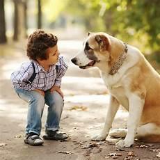 Pets For Popsugar