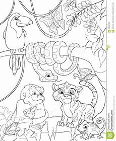 jungle forest with animals vector illustration