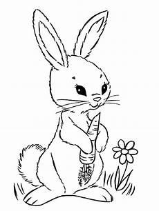 ausmalbilder kaninchen malvorlagen kostenlos zum ausdrucken