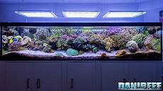 1000 liters of the marine aquarium of the month by carlo