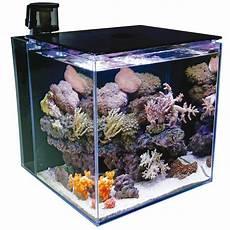 tmc microhabitat 60 marine white nano meerwasseraquarium