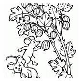 Coloring Page  Handicraft Berries