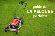 enlever mousse gazon rateau conseils pour l entretien d une pelouse verte au printemps