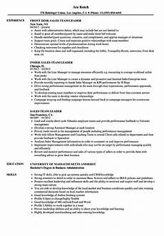 sales team leader resume sles velvet