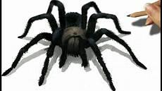3d Pencil Drawing Of A Black Spider Jasmina Susak