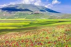 paesaggi fioriti prati fioriti a castelluccio di norcia umbria italia
