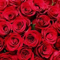 Bouquet De Roses Quot 70 Roses Rouges Quot Livraison Express