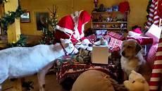 Malvorlagen Weihnachtsmann Haus Live Aus Dem Haus Vom Weihnachtsmann