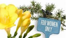 fiori per una donna fiori da regalare per una donna molto speciale leitv