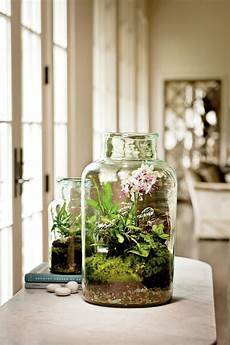 2017 home trend glass terrariums say yes