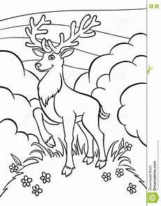 coloring pages animals deer stock vector