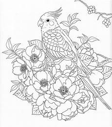 coloring pages of nature for adults 16381 harmony of nature coloring book pg 30 새 자수 도안 새 그림
