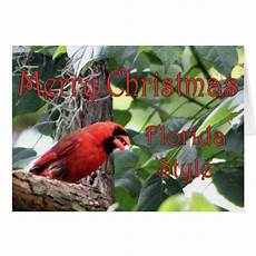 merry christmas florida style greeting card zazzle