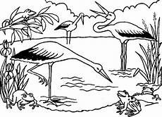 coloring pages ecosystem animals 16973 ecosystem coloring page coloring pages coloring pages
