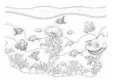unterwasserwelt malvorlage kostenlos ausmalbilder f 252 r kinder mit unterwasser szenen