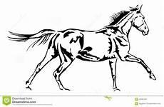 Malvorlage Galoppierendes Pferd Galoppierendes Pferd Stockbild Bild 29401551