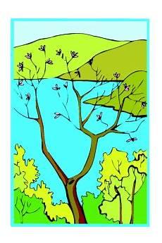 Malvorlagen Landschaften Gratis Cc Kahler Baum Blueten Ausmalbild Malvorlage Landschaften