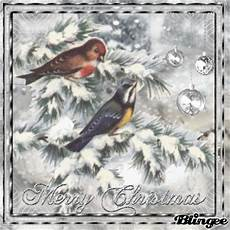 merry christmas nature picture 103808280 blingee com