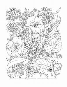 adult coloring a tangle of flowers set of 8 by emerlyearts on etsy