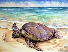 hawaiian green turtle painting by vincent callagher