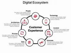 digital ecosystem ppt infographic template powerpoint design template sle presentation
