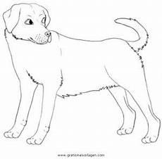 Ausmalbilder Schleich Hunde Labrador 3 Gratis Malvorlage In Hunde Tiere Ausmalen