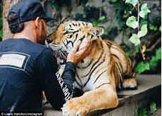 black jaguar white tiger foundation volunteer lewis hamilton comes from peta after he plays