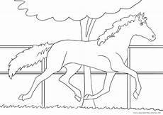 ausmalbilder pferde nr 19 ausmalbilder pferde viele