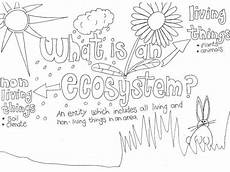 coloring pages ecosystem animals 16973 the best free ecosystem drawing images from 121 free drawings of ecosystem at getdrawings