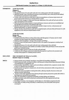 audit manager resume sles velvet