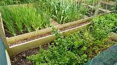 bauerngarten anlegen plan einen bauerngarten oder cottagegarten anlegen schritt f 252 r