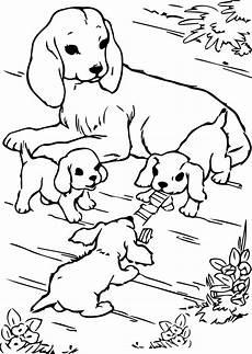 Ausmalbilder Hunde Welpen Welpen Ausmalbilder Zum Ausdrucken Kinder Ausmalbilder