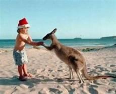 in australia holidappy