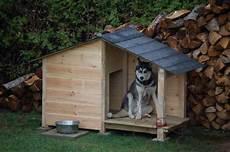 exemple de plan de niche pour chien plus