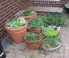 Apartment Patio Container Garden by Garden Design Update The Patio Before