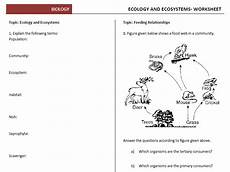 ecology and ecosystems worksheets teaching resources