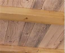 Schimmelpilze Mehr F 252 R Den Menschen Als F 252 R Das Holz
