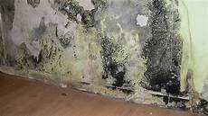 feuchtigkeit im mauerwerk beseitigen birro bautenschutz e k schimmelentfernung
