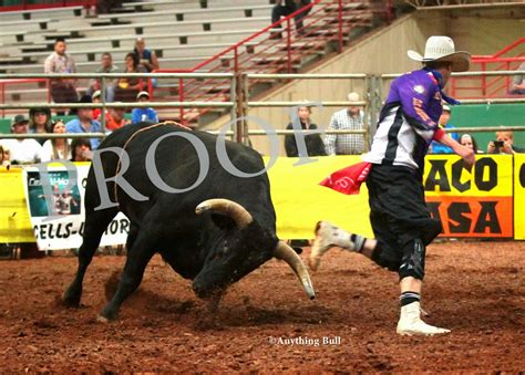 Bullfighting Fail